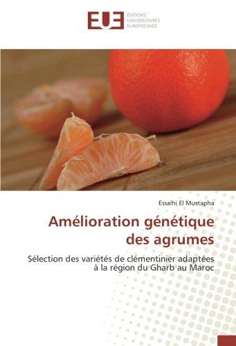 amelioration-genetique-des-agrumes-selection-des-varietes-de-clementinier-adaptees-a-la-region-du-gh
