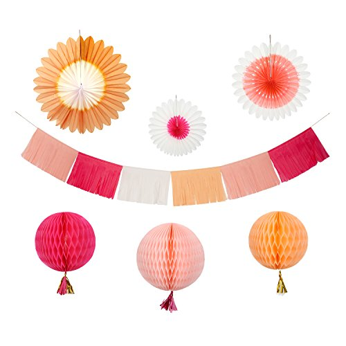 Meri Meri Decorating Kit (Pink) (Pink Decorating Kit)