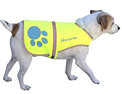 Reflective Dog Vest Large with Adjustable Strap and Florescent Reflectors. Safety Vest for Dogs and Dog Raincoat for Walks in Rain or Snow - Reflects Car Lights for Safety. Also Used As Hunting Vest for Dogs. Lightweight & Comfortable. Bonus Reflective Ve