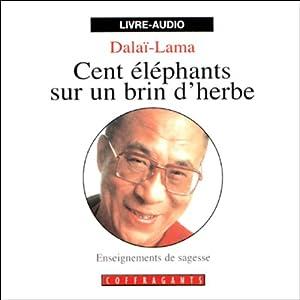 Cent éléphants sur un brin d'herbe Hörbuch