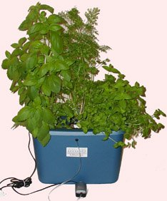 Stealth Hydroponics Bubbleponics® Grow Ready Kit