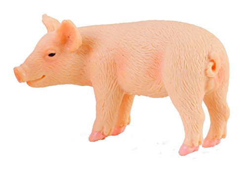 CollectA Standing Piglet