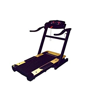 Champion Phoenix Folding Treadmill by Champion