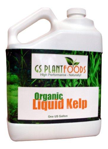 Gs Plant Foods Reviews