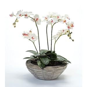 Ikebana Arrangements on Pinterest