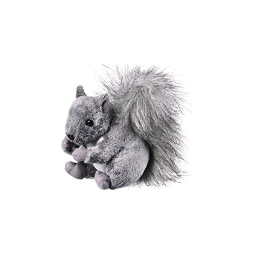 "Squirrel 6"" by Wild Life Artist"