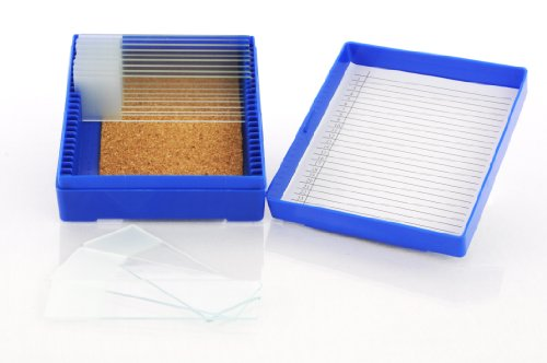 25 Capacity Slide Storage Box, Blue
