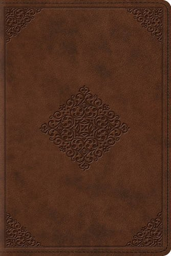 ESV Study Bible, Personal Size (TruTone, Saddle, Ornament Design) (Esv Personal Size Study Bible compare prices)