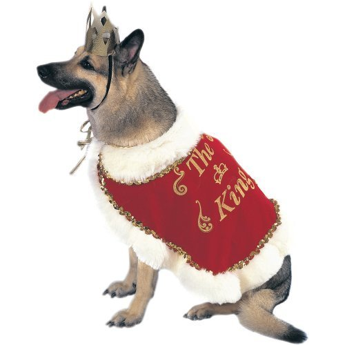 King Dog Costume Size Large