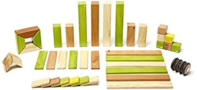 Buy Now Tegu Toys Magnetic Wooden Block Set, Jungle 42 Piece