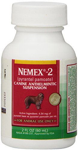 how to buy ivermectin on line