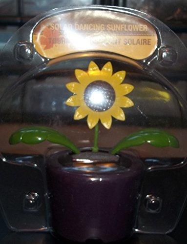 solar-powered-solar-powered-dancing-sunflower-sunflowers-dancing-flower-purple-pot-by-nasdaq-dltr