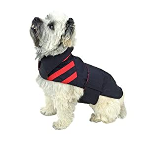 All-Weather Trench Dog Raincoat in Black Size-See Chart Below: 14""