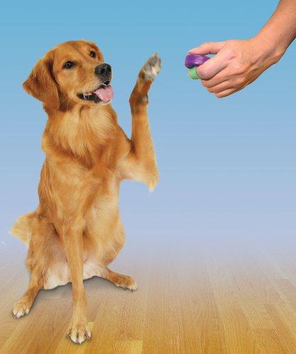 Пульт для дрессировки PetSafe Clik-RTM Trainer