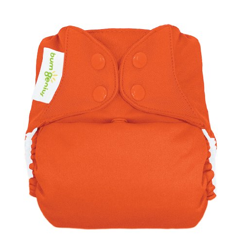 bumGenius-Freetime-All-In-One-One-Size-Snap-Closure-Cloth-Diaper