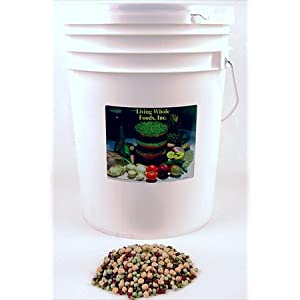 Protein Powerhouse Sprouting Seed Mix- Organic- 35 Lbs - Sprouting Sprouts, Cooking, Soup, Food Storage. High Protien Sprouting Seeds - Pea, Mung, More