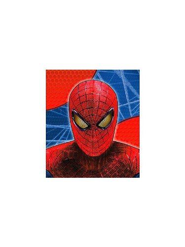 The Amazing Spider-Man Mini-Notebooks