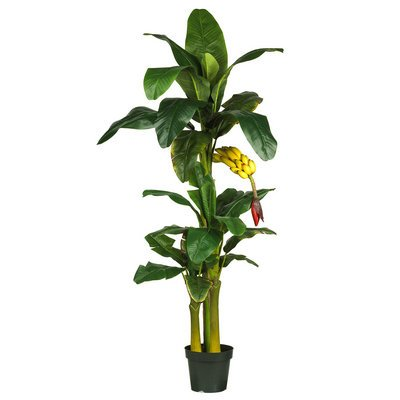 Nearly Natural 6' Triple Stalk Banana Silk Tree (Nearly Natural 4 Feet Ficus compare prices)