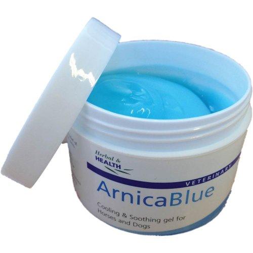 Arnica-Blue-100ml