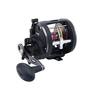 Warfare Level Wind Reel - 20, 5.1:1 Gear Ratio, 3 Bearings, 15 lb Max Drag, Left Hand, Boxed by Penn