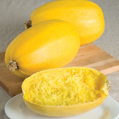 Buy Spaghetti Squash Now!