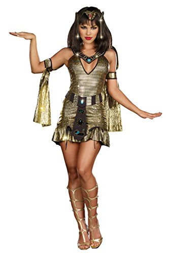 Naughty on the Nile Costume - Small - Dress Size 2-6