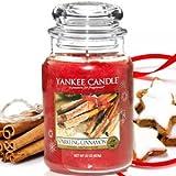 Yankee Candle Medium Sparkling Cinnamon Jar Candle 1100953