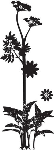 Wild Flower Silhouette - Rubber Stamps