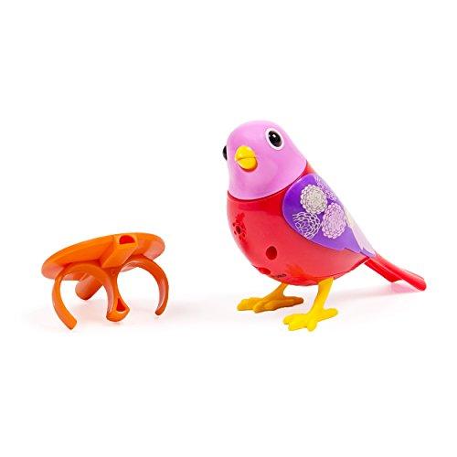 Digi Birds Single Pack, Red - 1