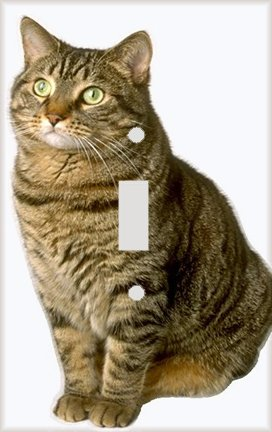 Tom Tabby Cat Decorative Switchplate Cover