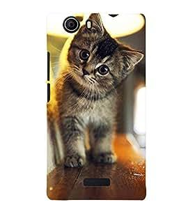 Printvisa Premium Back Cover Kitten On A Shelf Design For Micromax Canvas Nitro 2 E311::Micromax Canvas Nitro 2 (2nd Gen)