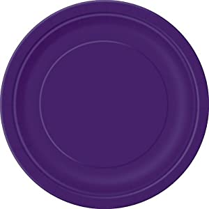 16 Count Dinner Plates, 9-Inch, Deep Purple
