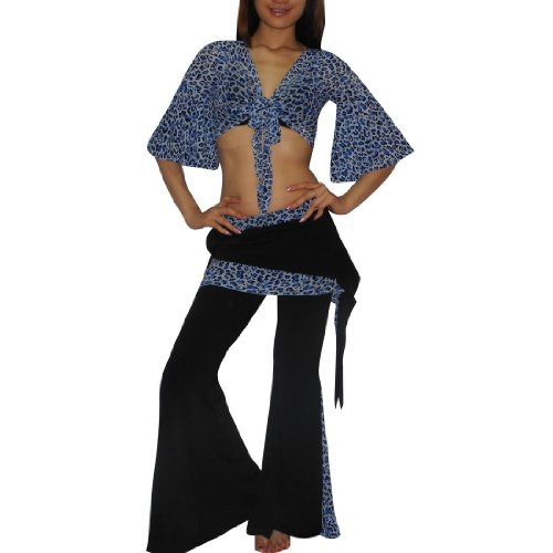 2 PIECE SET: Ladies Sexy Exotic Belly Dance Sheer Cropped Top & Skirt Pant Costume Set - Size: one size