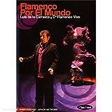 echange, troc Flamenco Por El Mundo