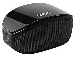 Artis BT27 Wireless Portable Bluetooth Speaker with FM Radio/TF Card Reader/Aux In (Black)