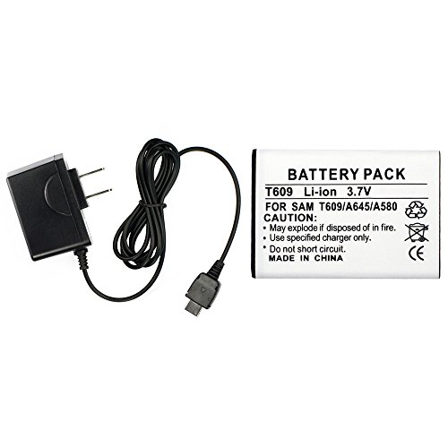 Fenzer Black Home Wall Charger Cell Phone Battery for Samsung SGH t219 t329 Stripe