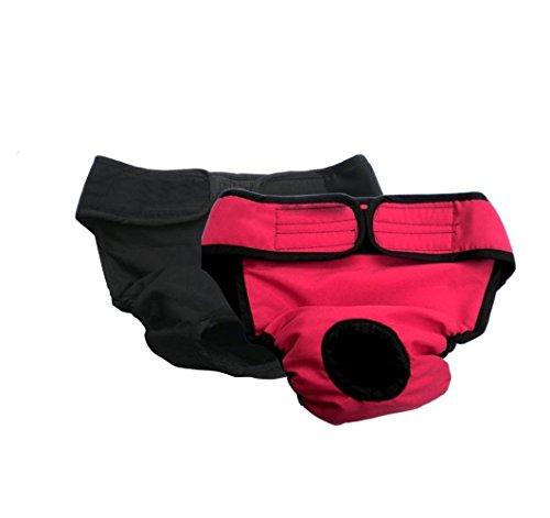 My Dog Underwear | 2 Pcs Comfortable Unisex Pet Diaper Sanitary Pants | Size L (19.7
