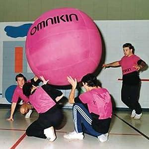 Buy One Pink 4-ft. Omnikin Kin-Ball including a Kin-Ball Bladder by School Specialty