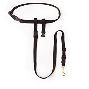 amazon com   the buddy system  small dog   pet leashes