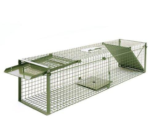 garten spa garten katzen und marderabwehr seite 5. Black Bedroom Furniture Sets. Home Design Ideas