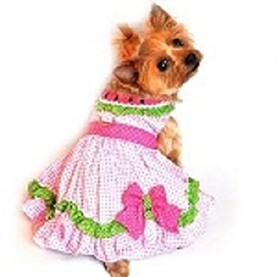 Watermelon Dog Dress Small