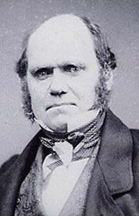 darwin essay principle population