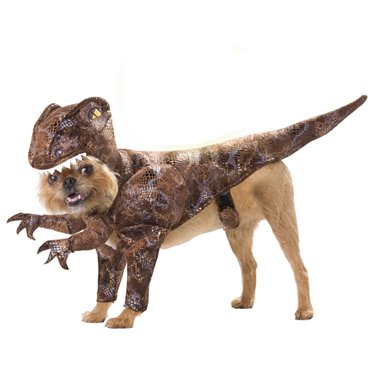 Raptor Dinosaur Pet Costume, Small