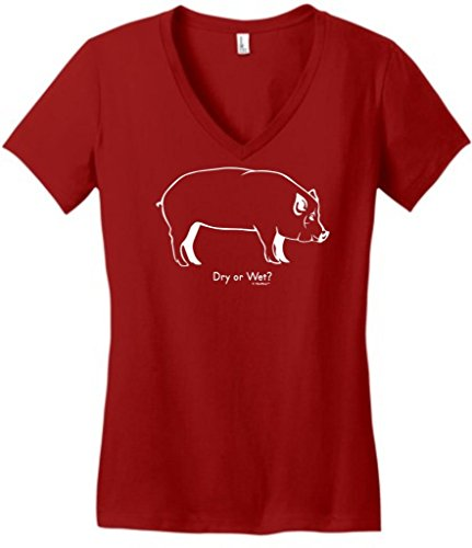 Dry Or Wet Funny Bbq Barbeque Juniors V-Neck Large Classic Red