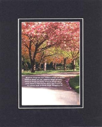 Inspirational Plaques - Whatever Things Are True, Whatever Things Are Honest, Whatever Things Are Just, Whatever Things Are Pure, Whatever Things Are Lovely, Whatever Things Are Of Good Report; If There Are Any Virtue, And If There Be Any Praise, Think On