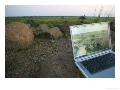 Laptop Computer in the Veld, Northern Tuli Game Reserve, Botswana Stretched Canvas Poster Print by Roger De La Harpe, 18x24