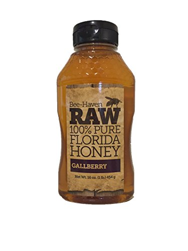 bee-haven-honey-farm-raw-local-100-pure-unfiltered-florida-honey-gallberry-16-ounce-1lb-454g-bottle-