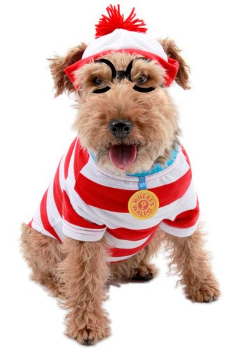 Wheres Waldo Woof Dog Kit Med