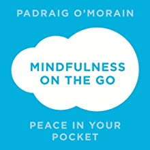Mindfulness on the Go: Peace in Your Pocket (       UNABRIDGED) by Padraig O'Morain Narrated by Peter Vollebregt