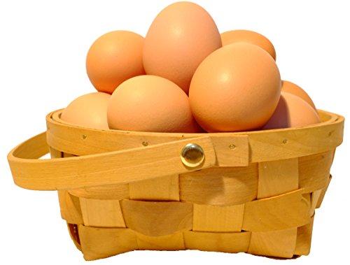 農家直送!たまご 北海道発、平飼いで育てた純国産鶏の有精卵  20個入り(1個あたり37円)
